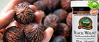 Грецкий,перегородки черного ореха, снижение сахара в крови,глистогонное