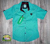 Рубашка для мальчика бирюзовая Armani с коротким рукавом, фото 1