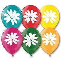 """Воздушные шары  Ромашки 14"""" (35 см), 50 штук в упаковке"""