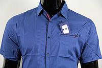Рубашка мужская ANG 35680/35685 норма и батал