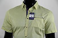 Рубашка мужская ANG 35240/35245 норма и батал