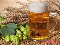 """Набор Пивовара  Pale Ale"" 10 л пива"