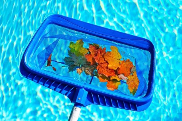 мусор в бассейне