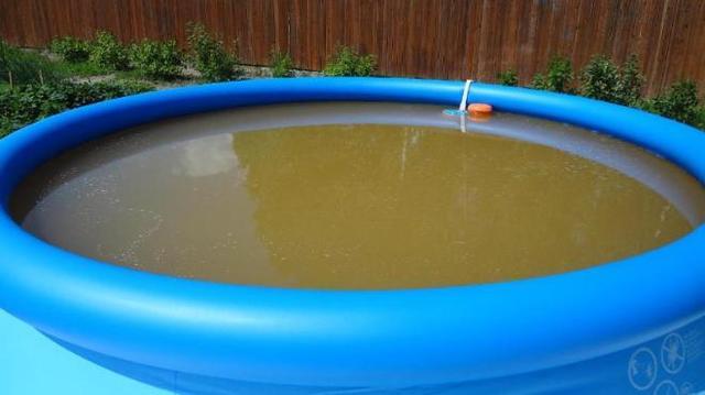 коричневая вода в бассейне
