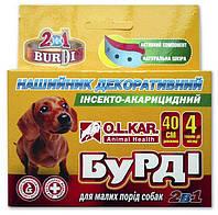 """Ошейник инсектоакарицидный для собак малых пород """"Бурди 2 в 1"""" с украшениями 40 см, защита до 4 мес"""
