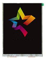Дисплей для планшета  EXPLAY SM2 (173*130 мм), 40pin 1027x768 IPS