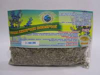 Трава Живучки ползучей - разжижает желчь и растворяет желчные камни