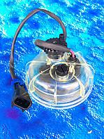 Колба фильтра сепаратора 24 В., с подогревом MAN, DAF, Камаз ЕВРО-2, фото 1