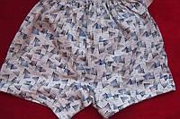 Детские трусы мальчиковые шортами рисунок шпили