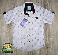 Белая рубашка Gucci для мальчика с коротким рукавом