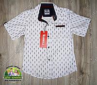 Белая рубашка YSL с коротким рукавом для мальчика