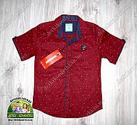 Бордовая рубашка для мальчика с коротким рукавом