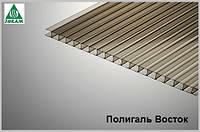 Сотовый поликарбонат Polygal (Россия) 4мм бронза