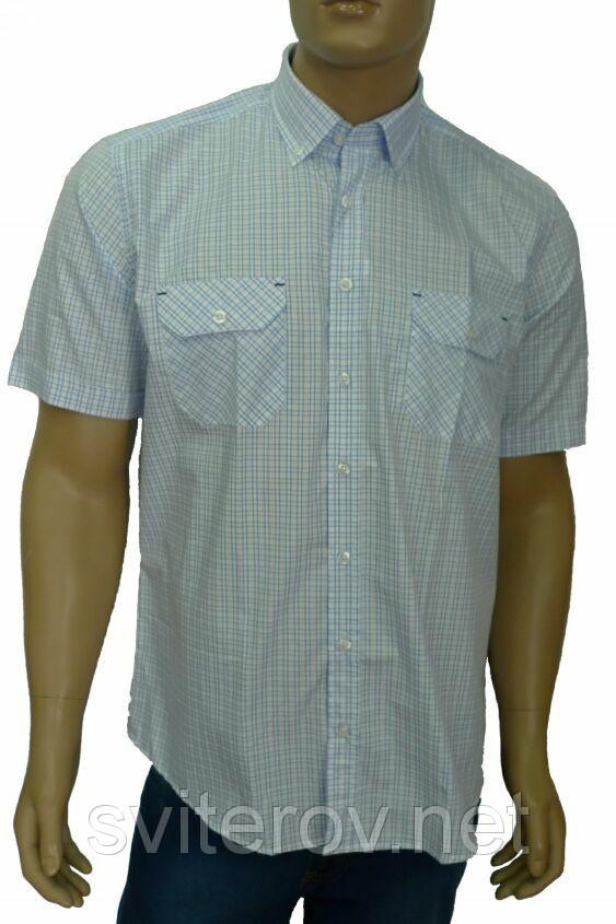 мужская сорочка короткий рукав