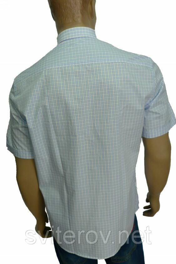 рубашка Aygen Pronto Moda короткий рукав