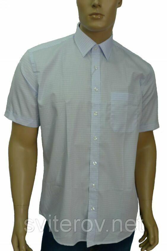мужские рубашки Киев