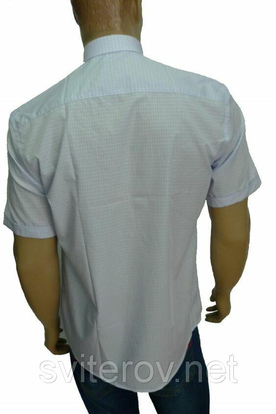 Мужская рубашка в мелкую клетку AYGEN (Турция)