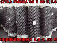 """✅ Сетка """"Рабица"""" 60х60, D 1.6 мм, оцинкованная 2.0х10 м"""