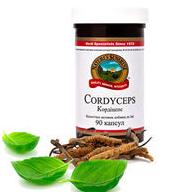 Cordyceps  Кордицепс рассеянный склероз,для почек,щитовидки