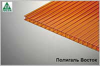 Сотовый поликарбонат Polygal 10мм янтарь