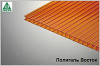 Поликарбонат сотовый Polygal 10мм янтарь
