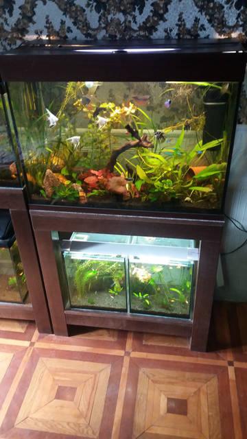 Стеллажи для аквариумов 4