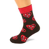 Носки женские разноцветные хлопок темно-коричневые с красным сердечком Ж-900004