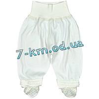 Ползунки для младенцев LenLa11T014d интерлок 2 шт (0-3 мес)