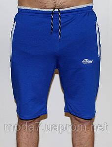 Мужские трикотажные шорты Maraton синие 19