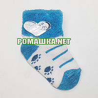 Детские махровые носки р. 56-62 для новорожденного 95% хлопок 5% эластен ТМ Ромашка 3195 Синий