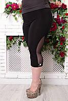 Бриджи женские большого размера Сетка батал, трикотажные бриджи больших размеров