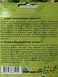 Огурец Виноградная гроздь F1 0,5гг (корнишон), фото 2