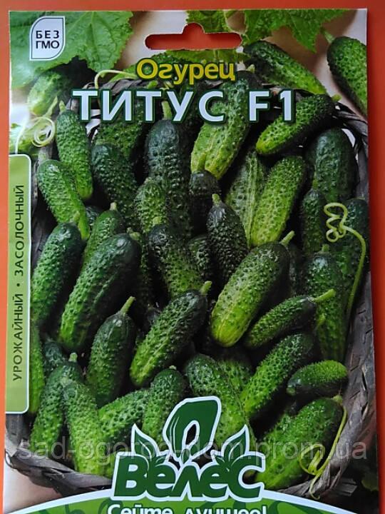 Огірок Титус F1 (корнішон) 2,5г