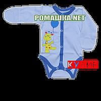 Детский боди с царапками р. 56 ткань КУЛИР 100% хлопок 3655 Голубой