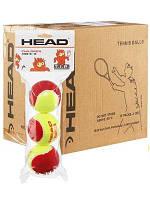 Теннисные мячи Head tip  red 72 мяча