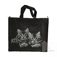 Эко сумка небольшого размера черная с принтом котят