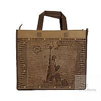 Эко сумка маленькая с принтом Статуи Свободы
