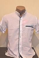 Мужская рубашка RedPolo однотонная, кототкий рукав