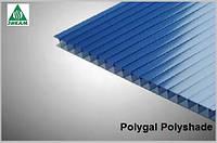 Сотовый поликарбонат Polygal Polyshade (Израиль) 8мм синий