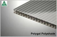 Поликарбонат сотовый Polygal Polyshade (Израиль) 8мм серый