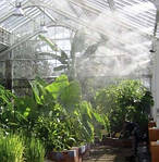 Борьба с пылью, комарами, насекомыми при помощи системы «тумана».