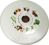 Электросушилка (сушилка) для овощей и фруктов Ветерок-2, фото 2