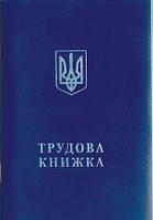Трудовая книжка  ТК БСО
