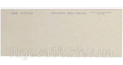 09cee117b1b9f8 Гипсокартон Plato Arka 6,5 (ГКП 6,5 *1200 * 2500) Siniat - купить по ...