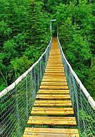 Фотообои Светящиеся Сделай Шаг Природа Пейзаж Декор Стен Дизайн Интерьера Зеленые Деревья