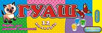 Краски Гуашь Люкс 12цветов, обьем 20мл ящ24, фото 1