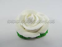 Роза белая Ø 6 см