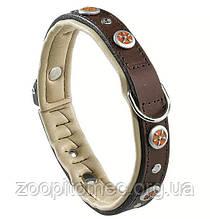 Кожаный ошейник для собак с заклепками GIOTTO BROWN C 20/34