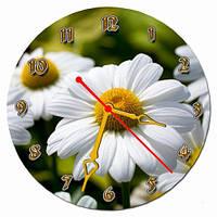 Часы настенные круглые арт13, ромашки 30х30 хороший Подарок