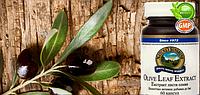 Экстракт листьев оливы 60 капс.природный антибиотик